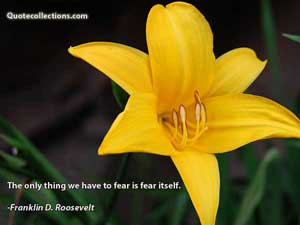 Franklin D. Roosevelt Quotes 5