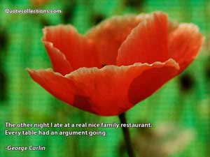 George Carlin Quotes 4