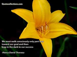 Henry David Thoreau Quotes 1