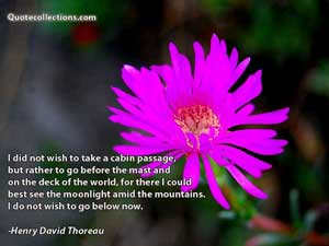Henry David Thoreau Quotes 2