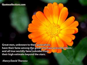 Henry David Thoreau Quotes 3