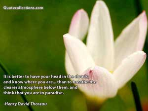 Henry David Thoreau Quotes 5