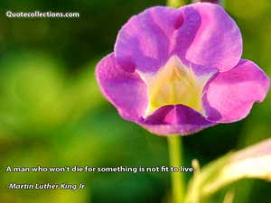 Martin Luther King, Jr. Quotes 1