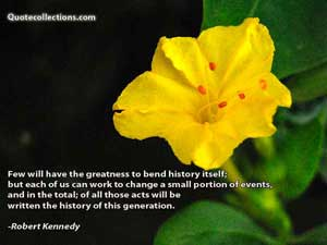 Robert Kennedy Quotes 1