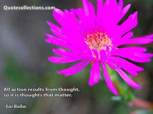 Sai Baba Quote Collections