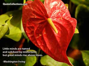 Washington Irving Quotes 1