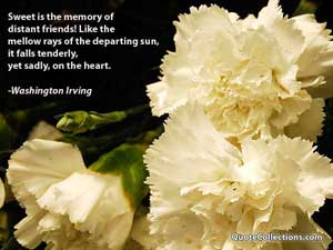 Washington Irving Quotes 2