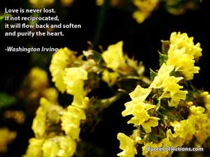 Washington Irving Quotes 5