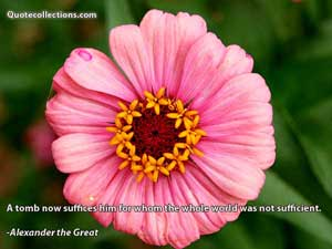 Alexander The Great Quotes 6