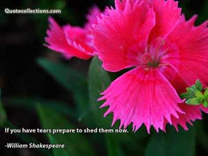William Shakespeare Quotes 1