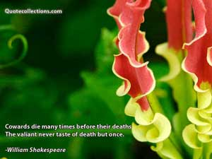 William Shakespeare Quotes 3